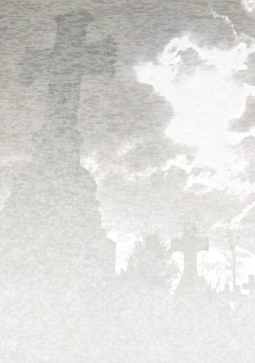 527958_37408215-fog2s