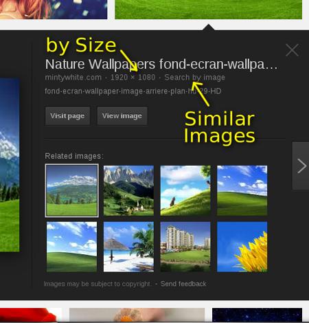 Google Images 1