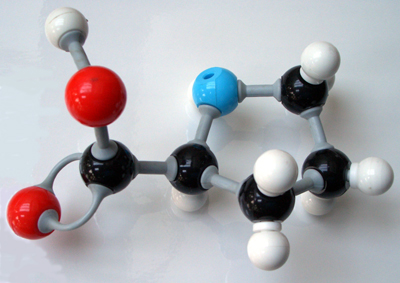 Model of the Prolene molecule