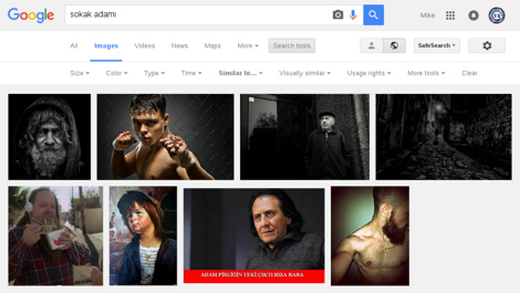 Results of the 'Visually Similar Images' link