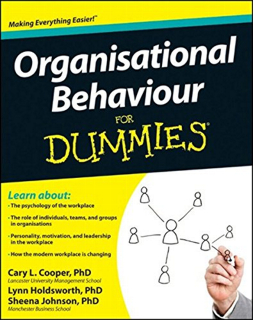 organizational behavior for dummies pdf