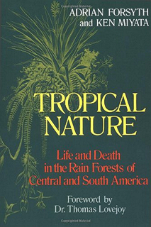 263-tropical-nature