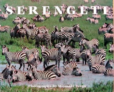 446-serengeti