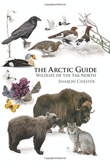524-the-arctic-guide